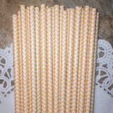 Peach Chevron Paper Straws
