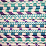 Princess Jasmine Paper Straws Mix