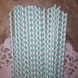 Turquoise Checkered Paper Straws