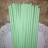Sea Foam Chevron Paper Straws